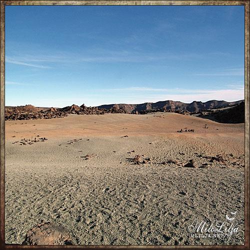 2012-01-27-Teneriffa15