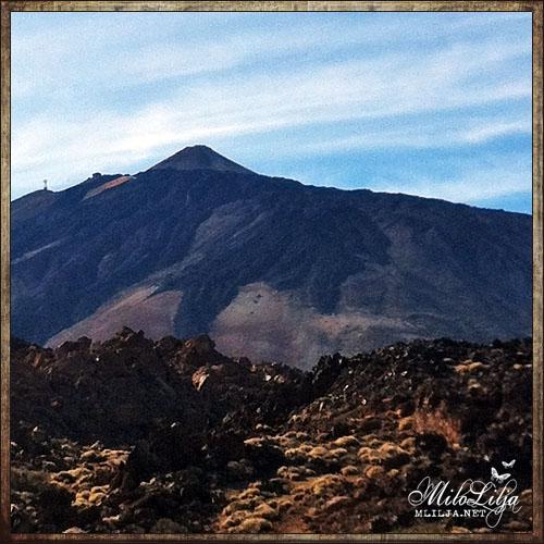2012-01-27-Teneriffa25