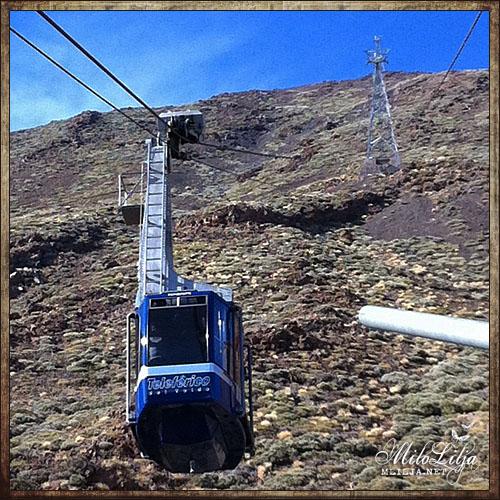 2012-01-27-Teneriffa26