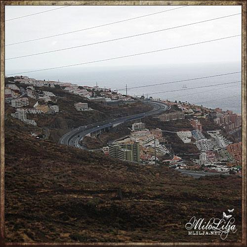 2012-01-28-teneriffa14