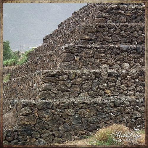 2012-01-28-teneriffa40
