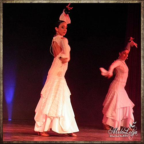 2012-01-28-teneriffa70