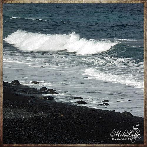 2012-01-30-teneriffa12