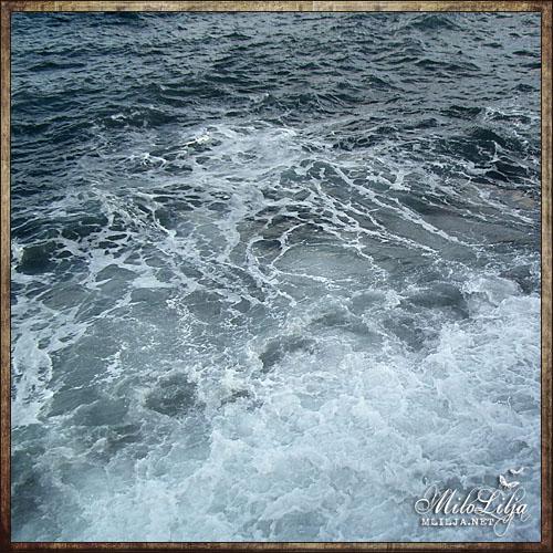 2012-01-30-teneriffa14