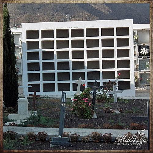 2012-01-30-teneriffa27