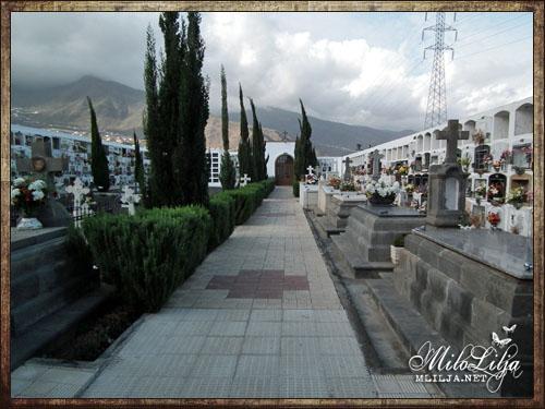 2012-01-30-teneriffa29