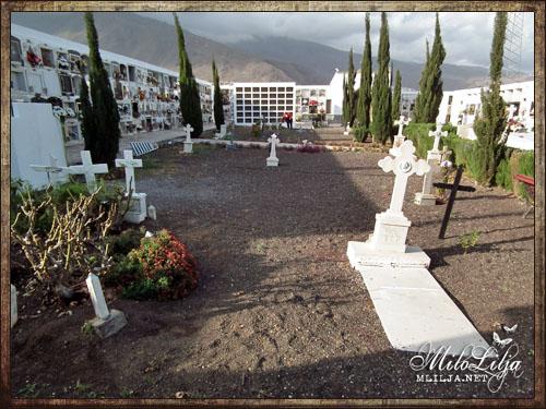 2012-01-30-teneriffa37