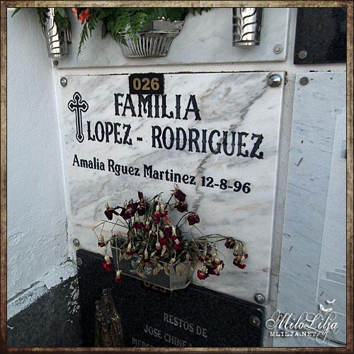 2012-01-30-teneriffa38