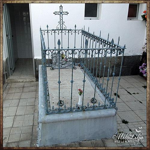 2012-01-30-teneriffa40