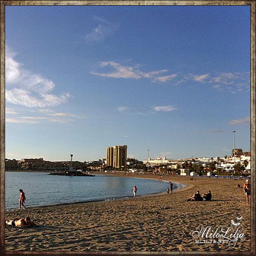 2012-01-30-teneriffa41