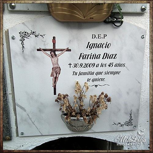 2012-01-30-teneriffa44