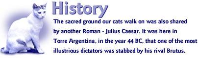 history_small